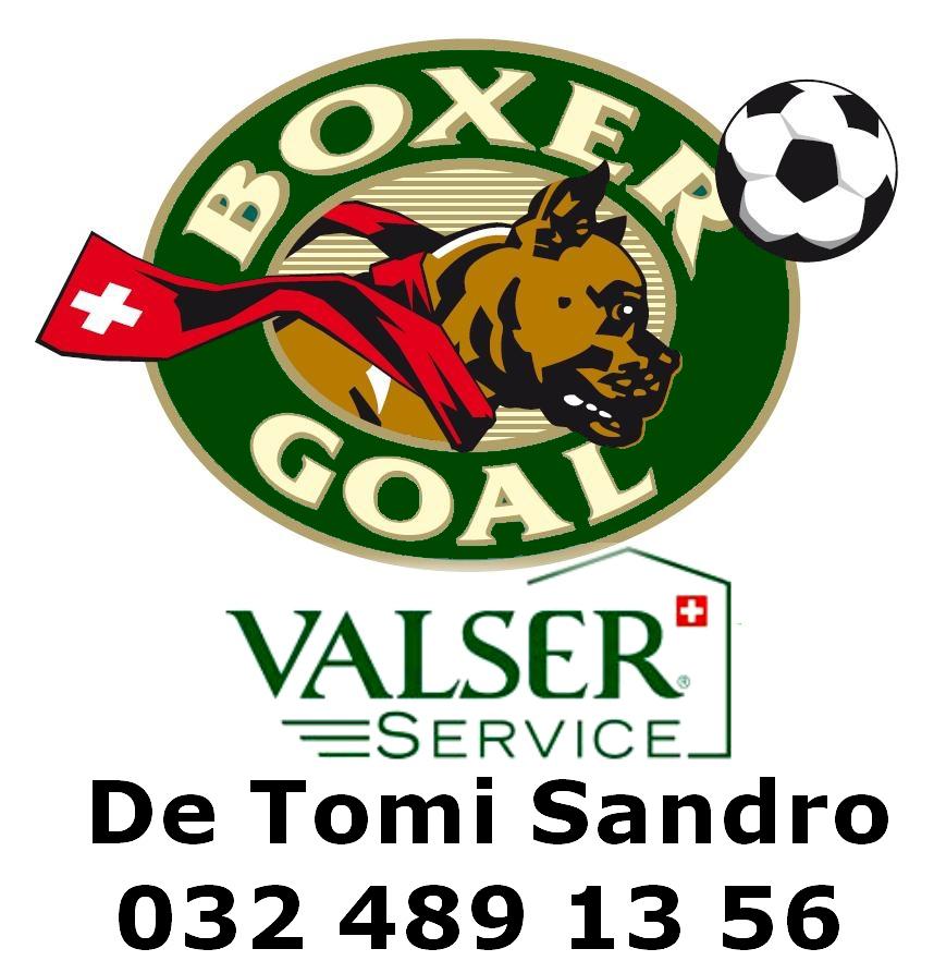 Valser Service